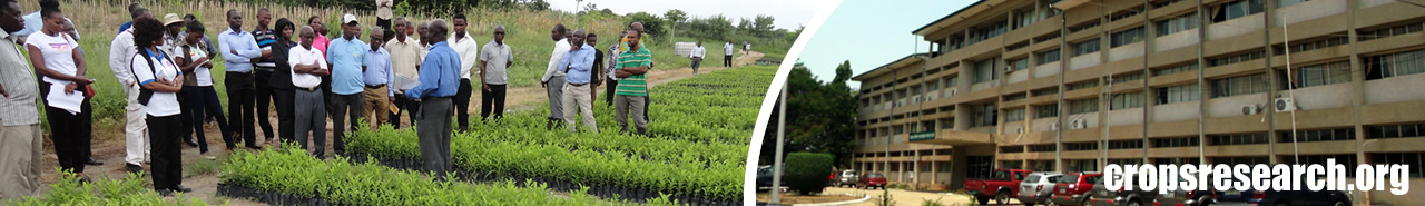 Crops Research Institute - Refereed Journal Papers